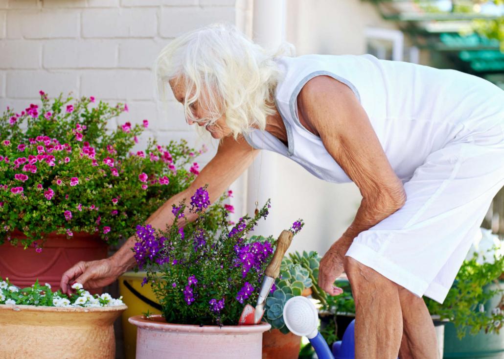 Humus per giardini e orti